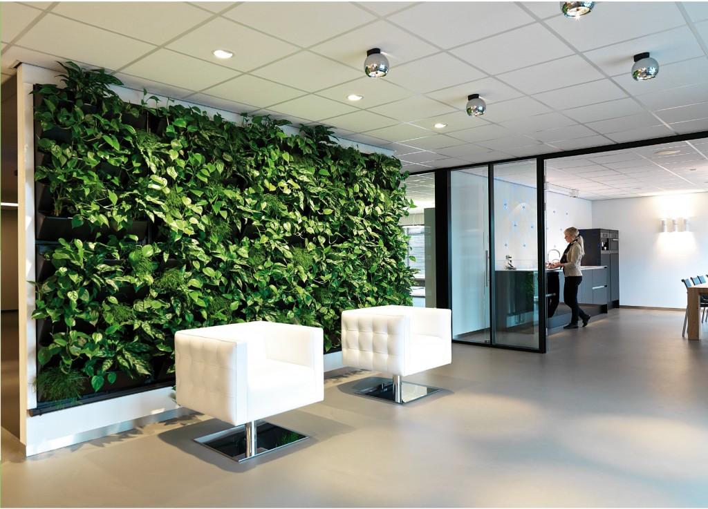 Un mur vert, une solution d'aménagement végétal efficace