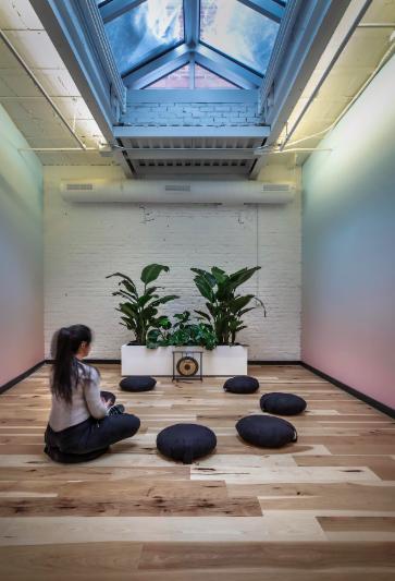 Un aménagement de plantes dans un salle de yoga