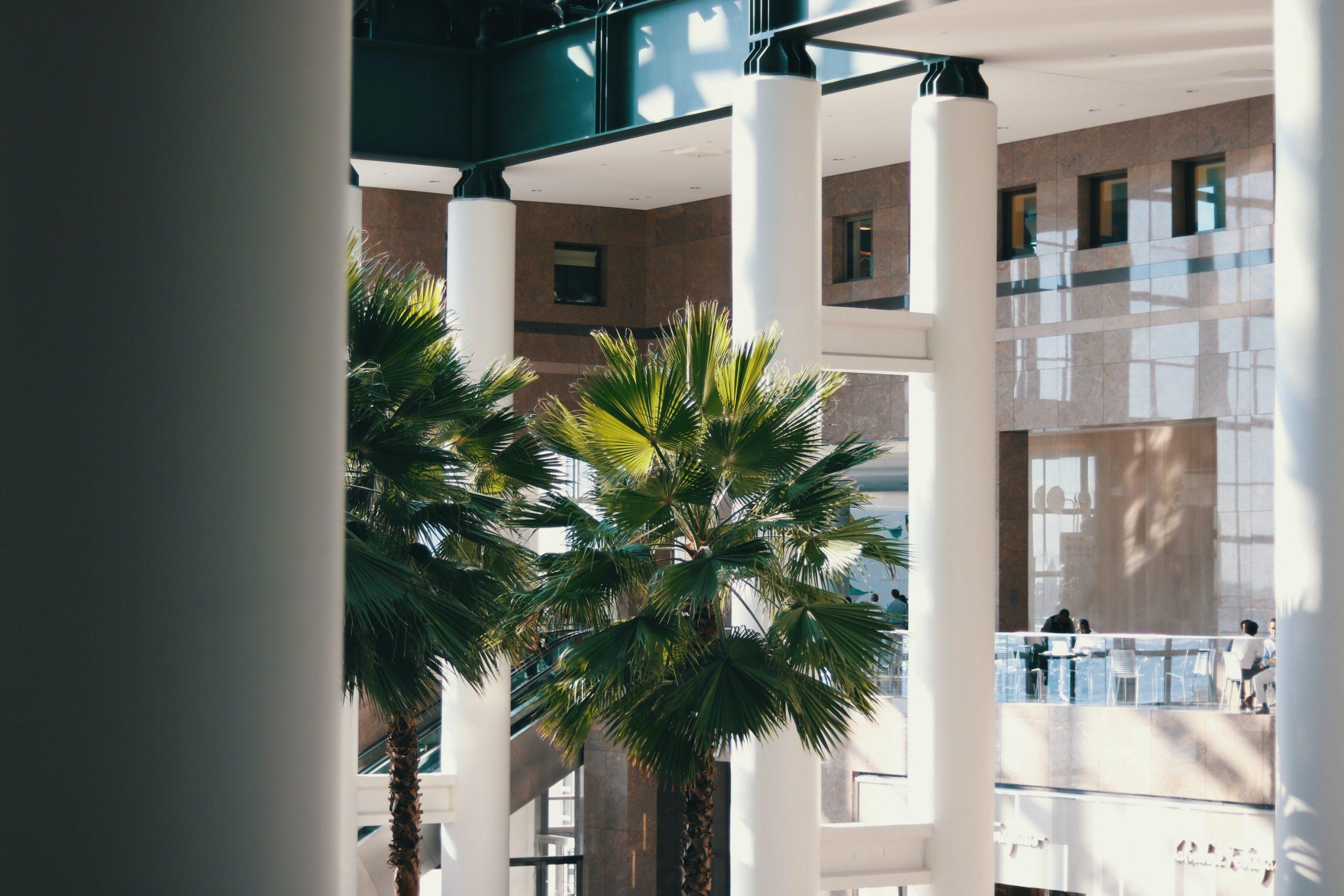 design biophile arbres édifice commercial