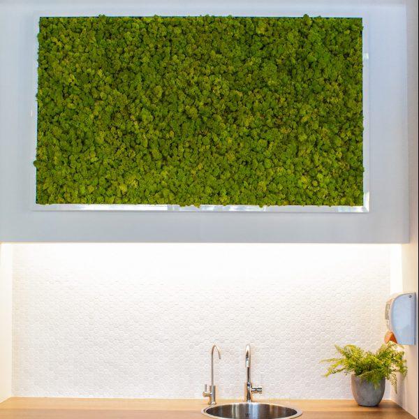 Mur vert chez Desjardins, une réalisation de Planteca