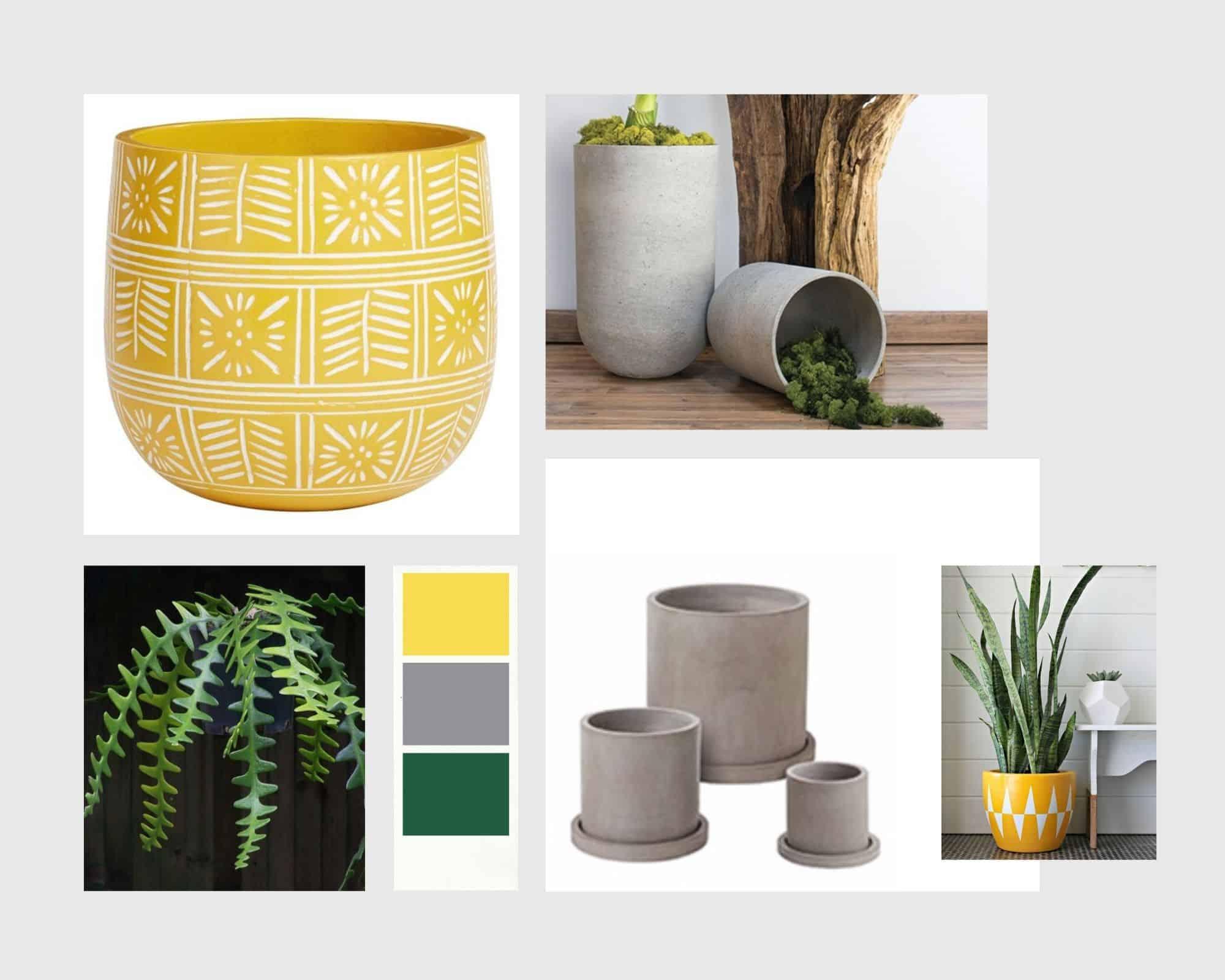 Accessoires pour plantes couleurs Pantone 2021