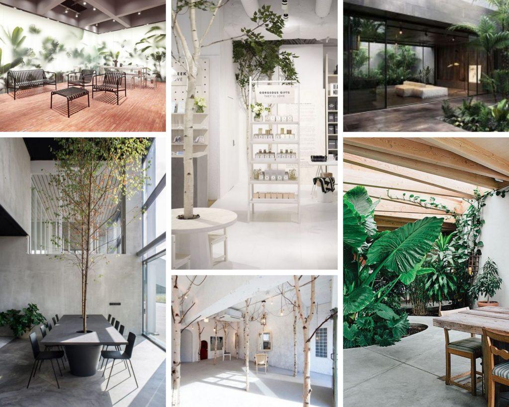 Design commercial avec des arbres